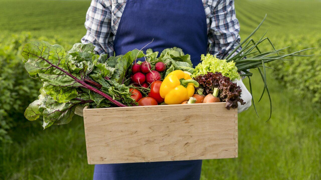 https://www.danielarondinelli.it/wp-content/uploads/2020/10/close-up-man-holding-basket-with-vegetables-1280x720.jpg